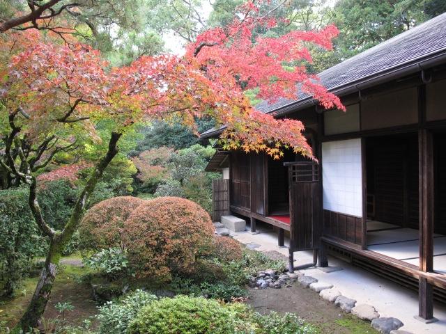 Japan_Kyoto (276)